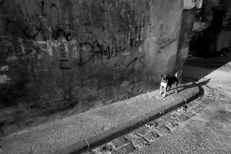 Photographs from Perpignan - MARK ESPER. PHOTOGRAPHER