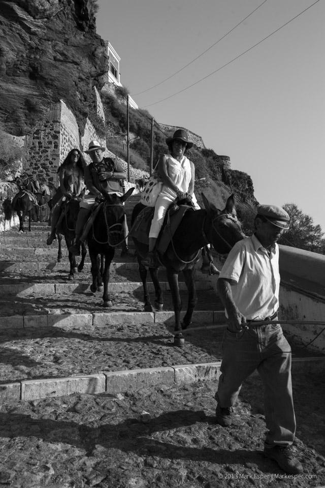 Photos of A Donkey's Life - MARK ESPER. PHOTOGRAPHER